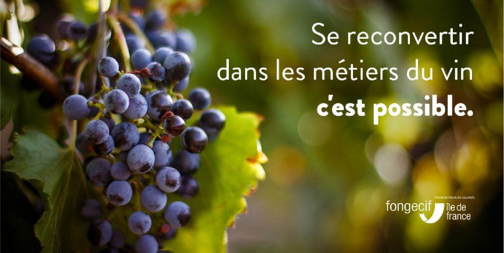 vin vigneron caviste sommelier métier
